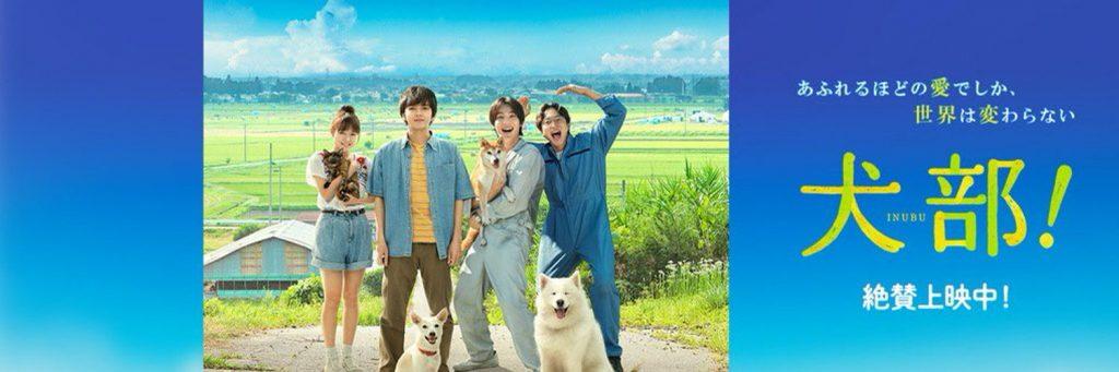 犬部!,動画